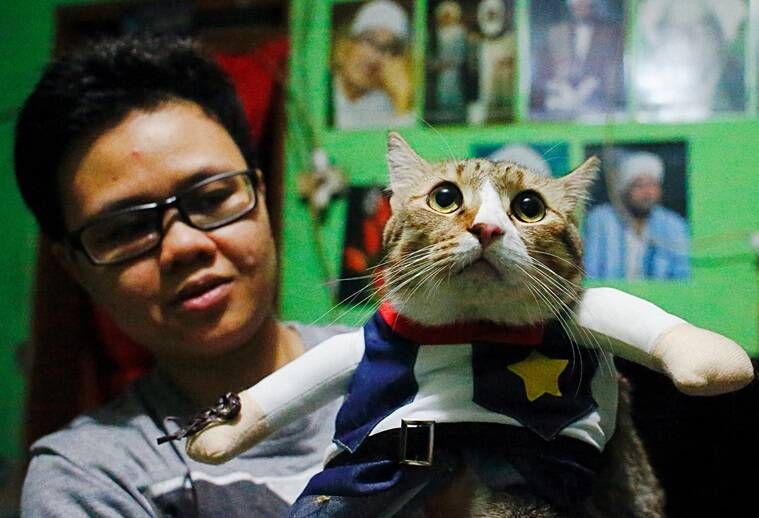 cat fashion, cat cosplay, cat makeover, cat fashion costumes, indonesia man cat costumes, feline dresses, viral news, odd news, indian express