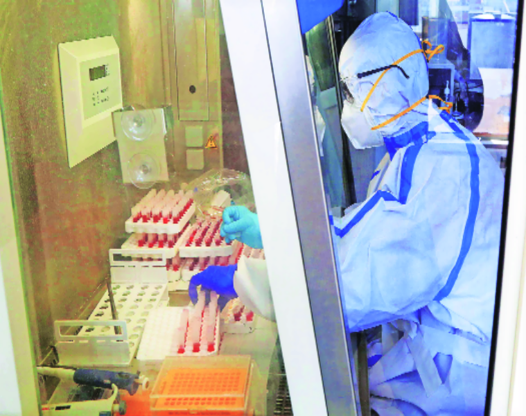 Panchkula remained positive in its fight against the coronavirus