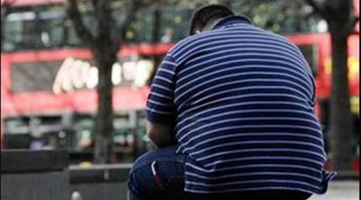 Himachal residents overweight, national health survey, body mass index, SHimla news, HImachal news, Indian express news
