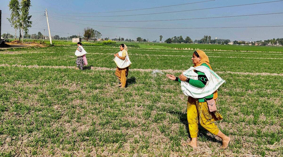 Amid stir, subsidy to Punjab farmers, MSP bill in focus
