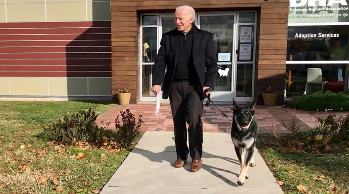 Joe Biden, Joe Biden pets, Joe Biden dogs, Joe Biden pets in White House, Joe Biden dogs in White House, Major Biden, indian express news