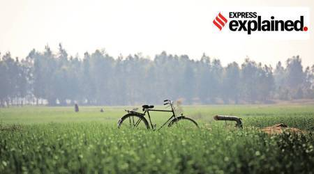 An Expert Explains: Issues in Indian agriculture