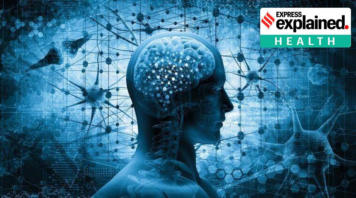 covid brain damage, covid affect on brain, covid and brain, indian express