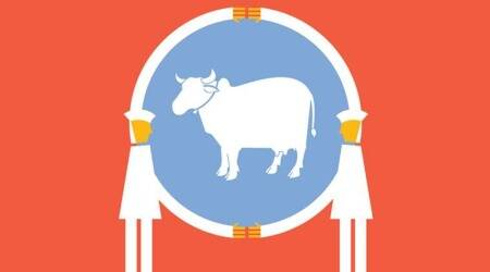 cow science, national cow exam, national exam on cow, cow education india, indian education, education news