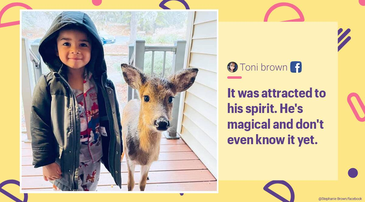 4-year-old and deer friendship, 4-year-old and deer viral picture, human and deer unusual friendship, human and animal friendships, 4-year-old deer best friend, Trending news, Indian Express news