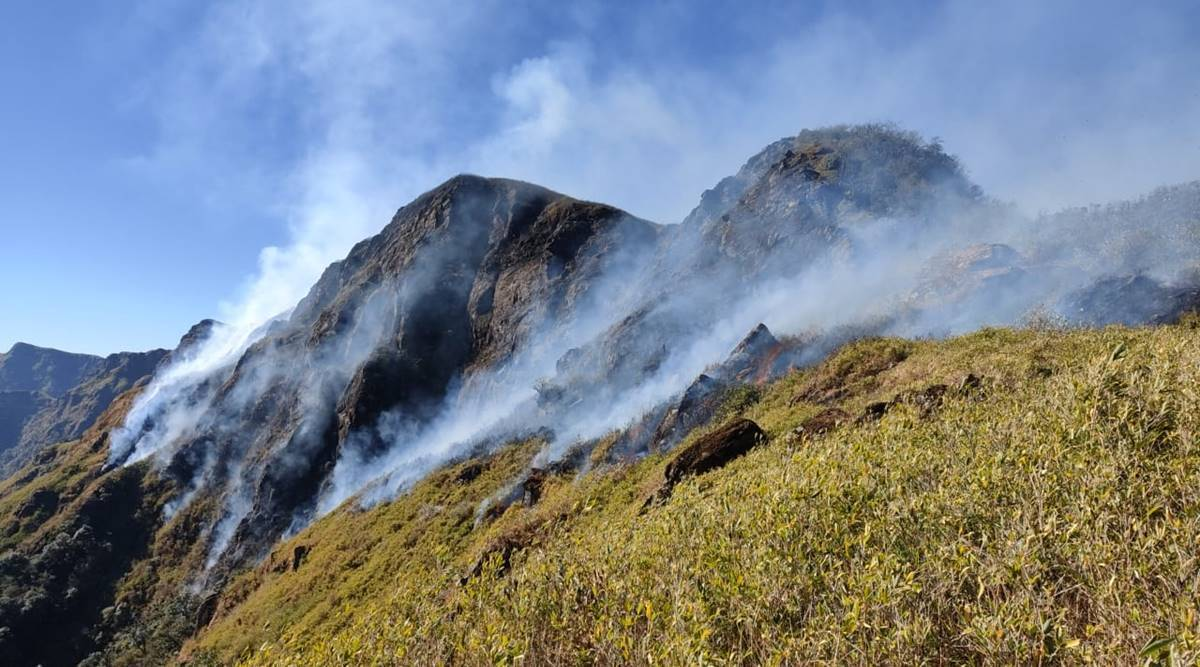 wildfire in Nagaland, Dzuko valley wildfire, nagaland manipur border wildfire, India news, Indian Express