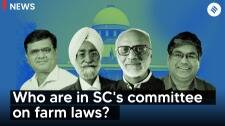 Who are the members on SC's committee on farm laws?