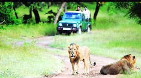 Gir national park, Wild Life policy