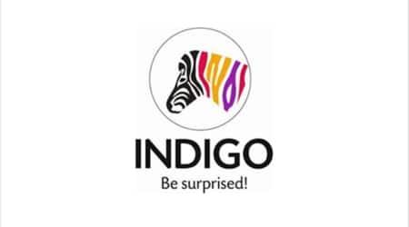 indigo paints ipo, indigo paints