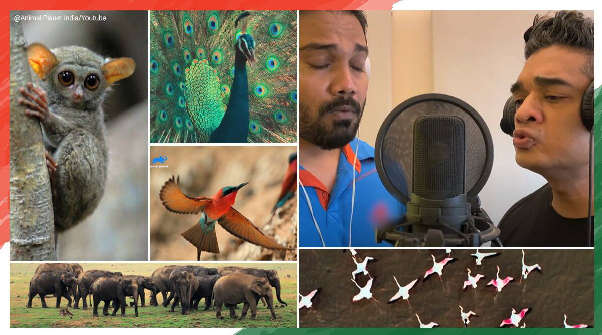 republic day, republic day 2021, 72nd republic day, animal planet, Saare jahaan se achha' voices of animals, animal planet viral, patriotic song animal voices, RaagaTrippin, indian express news, Trending news