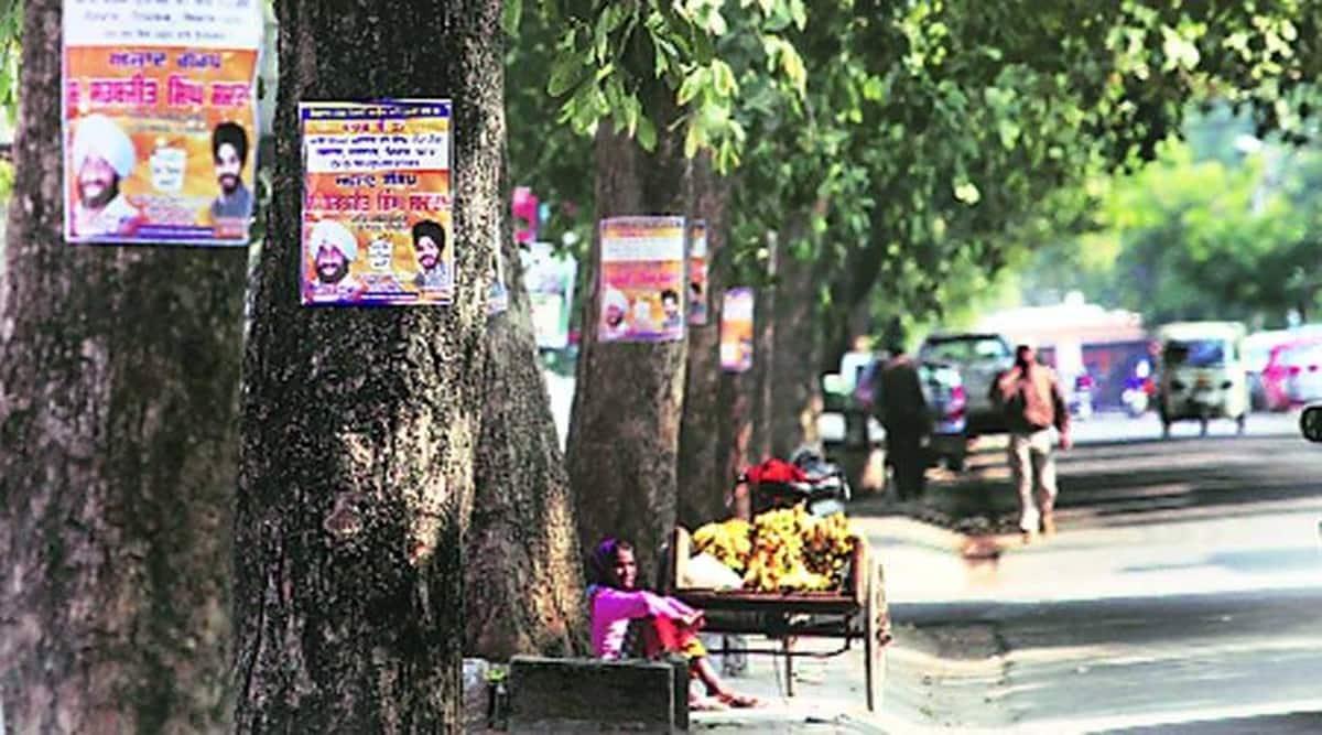 Mohali civic polls Punjab