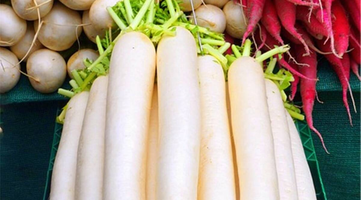 Suffering from cold and cough? Have radish for relief