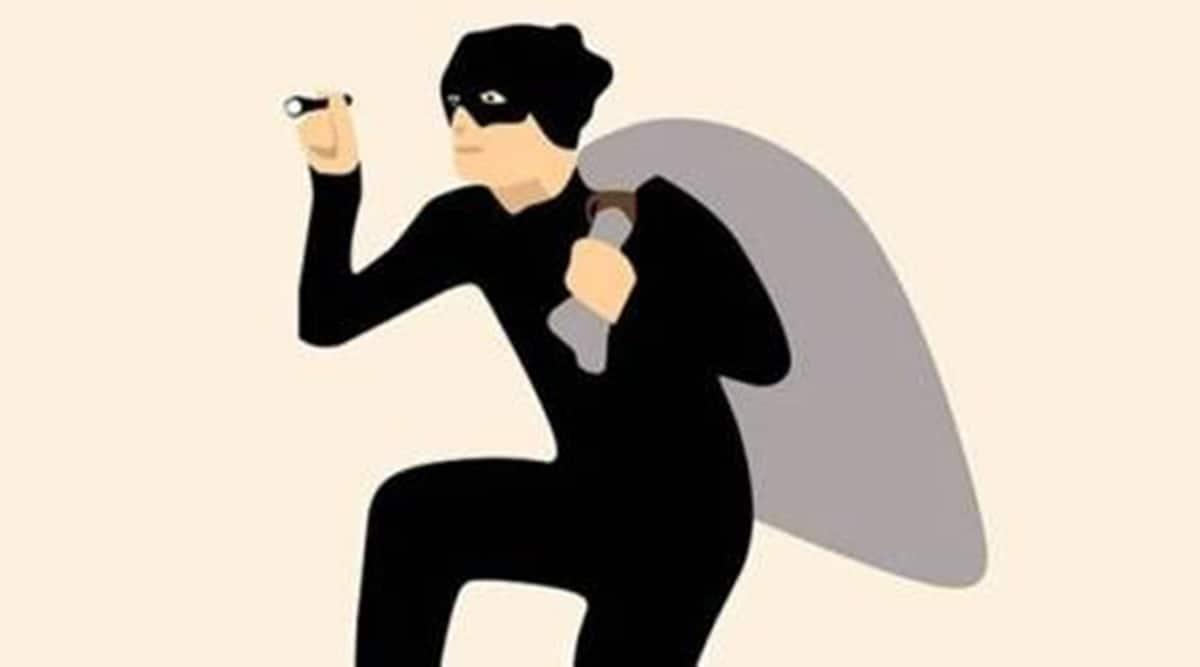 Vdodara crime news, Vadodara robbery, Vadodara theft, piggy bank, indian express news