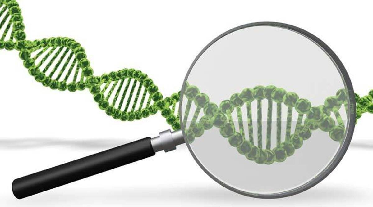 Close watch on for new mutation or variants of virus: Experts