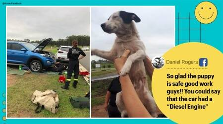 Dog, Dog rescue, Dog inside car engine, Dog rescued from car engine, Dog Australia, rescueNew South Wales, New South Wales dog rescue from car engine, Branxton Fire Station, Dog rescue pictures, Trending news, Indian Express news.