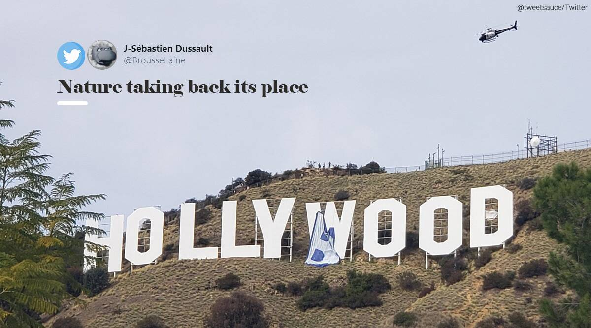 Hollywood Sign Briefly Read 'HOLLYBOOB'