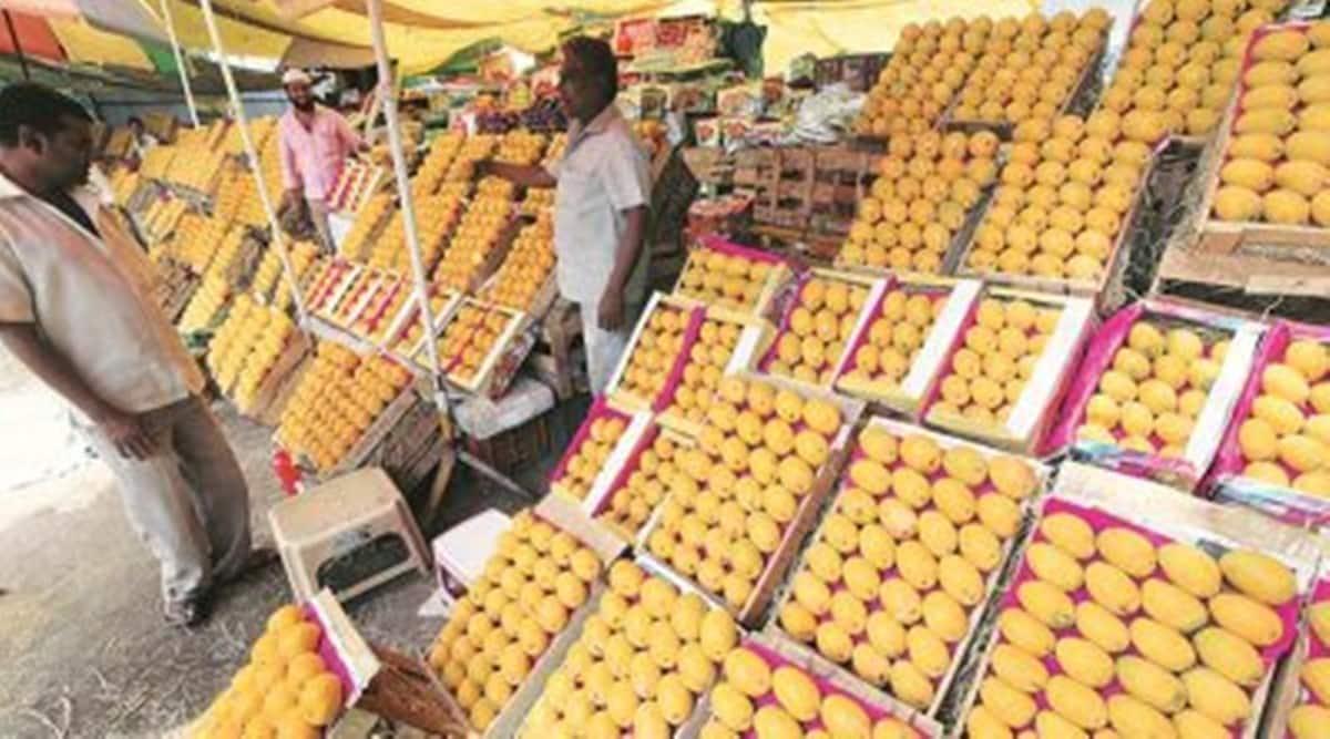 karnataka mangoes, karnataka mangoes sale, karnataka mangoes export, govt website to buy mangoes bangalore, karnataka covid news, bengaluru covid news, indian express