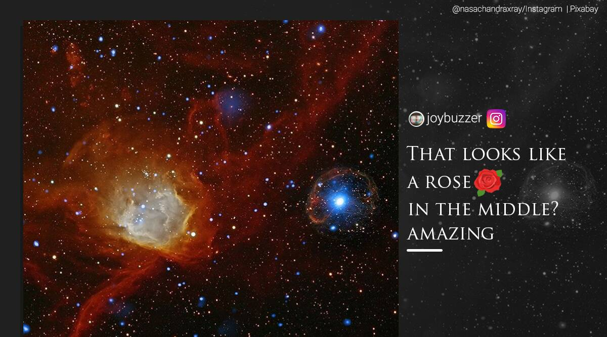 'Like a rose flower': How netizens reacted to NASA's picture of a pulsar - The Indian Express