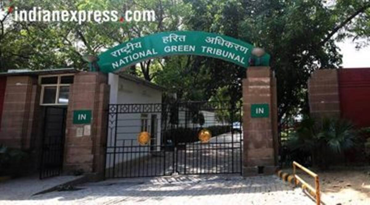 Stop functions and events at parks, Green Tribunal tells Delhi authorities
