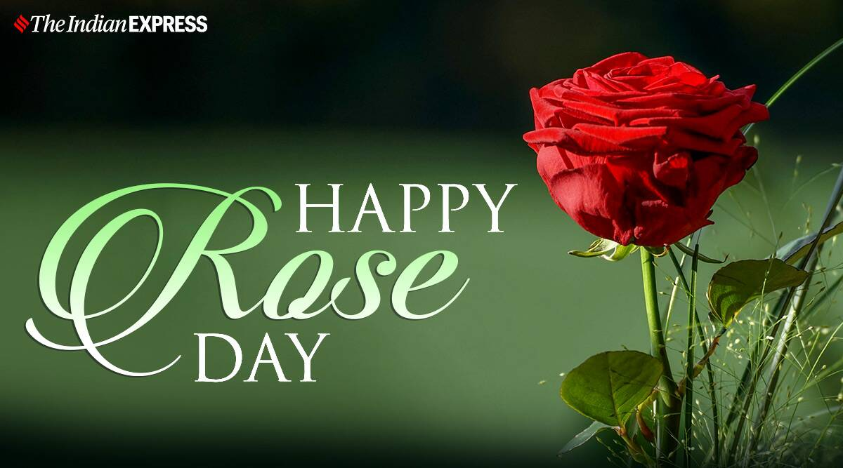 Happy Rose Day 2021 Wishes Images Quotes Status Hd Wallpapers Gif Pics Greetings Card Messages Photos 2021 wishes shayari rose day wallpaper