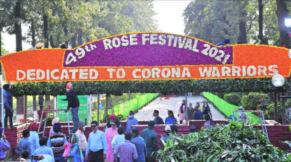 Chandigarh, rose festival