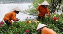 Two steps forward, one step back for Vietnam's labor rights