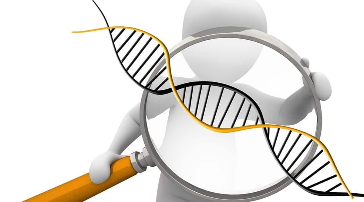 chromosome, chromosomal testing, pregnancy loss, indianexpress.com, indianexpress, embryos, indianexpress,