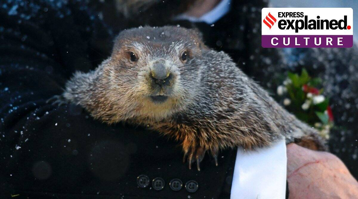 It's Groundhog Day in a time of pandemic