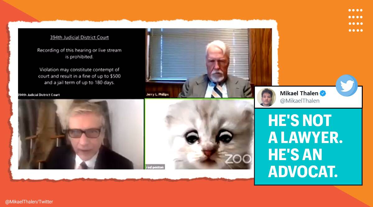 lawyer in cat filter, Zoom court proceeding, lawyer cat filter during virtual court proceeding, cat filter during virtual court proceeding, zoom mishap, hilarious zoom fails, zoom fails viral video, cat filter zoom viral video, lawyer cat filter zoom fail, Trending news, Indian express news