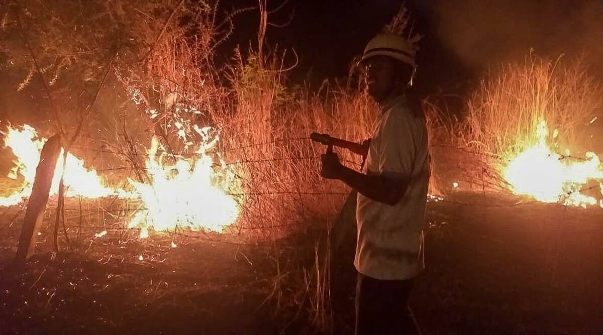 Pune forest and hill fires: All agency coordination meeting, night patrols on cards