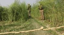 UP: Two teen girls cremated in Unnao village under heavy security blanket
