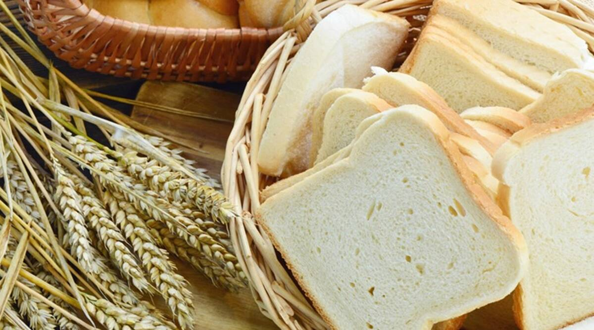 Gluten Intolerance, what is Gluten Intolerance, Gluten Intolerance symptoms, Gluten Intolerance foods, Gluten Intolerance treatment, Gluten Intolerance news, Gluten Intolerance indian express