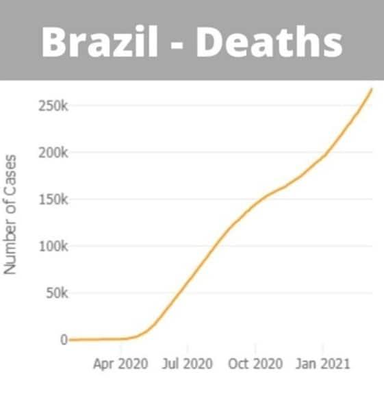Brazil, Brazil Covid-19 cases, Brazil coronavirus, Brazil news, Brazil Covid deaths, Jair Bolsonaro, Indian Express