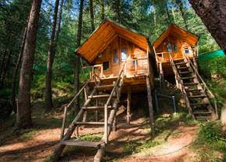 forests, forests in India, forest accommodations in India, wooded stays for Indian tourists, lesser known Indian destinations, Indian Express news