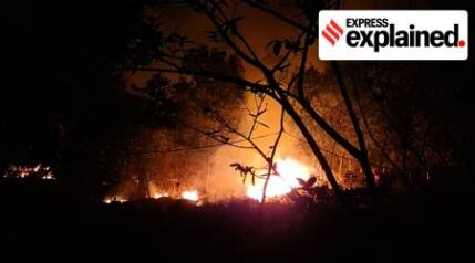 Why Simlipal forest fire is a matter of concern