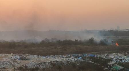 Fire breaks out at Bengaluru's Bellandur Lake, officials blame it on a burning garbage pile