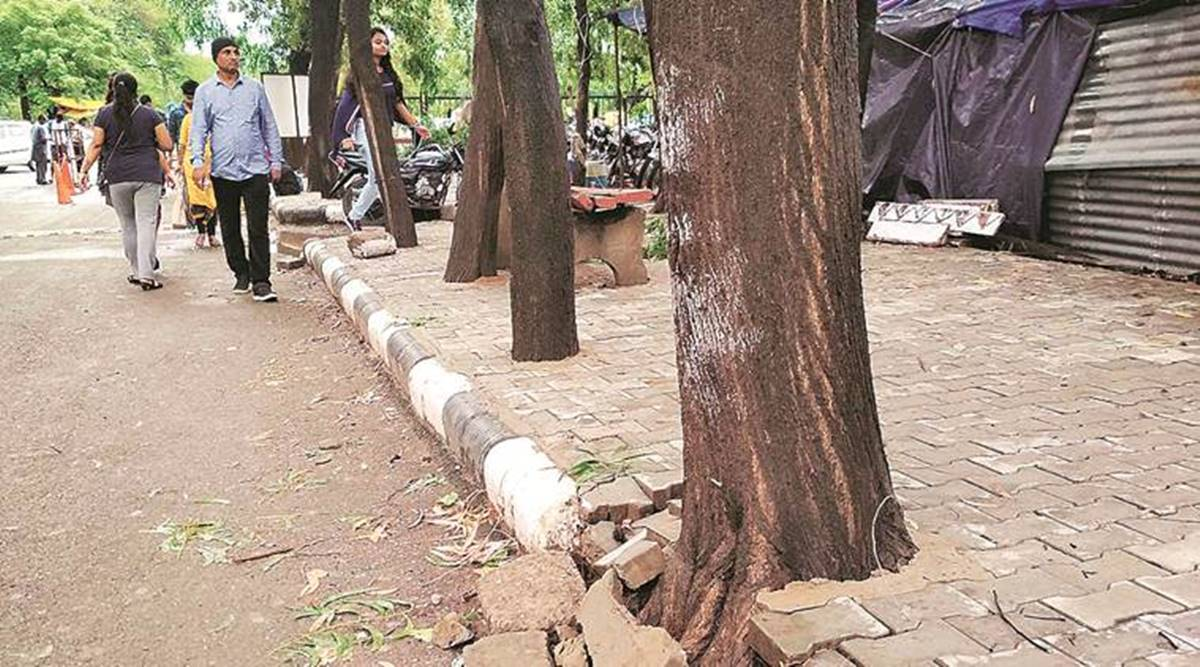 Chandigarh councillors & their paver block fixation