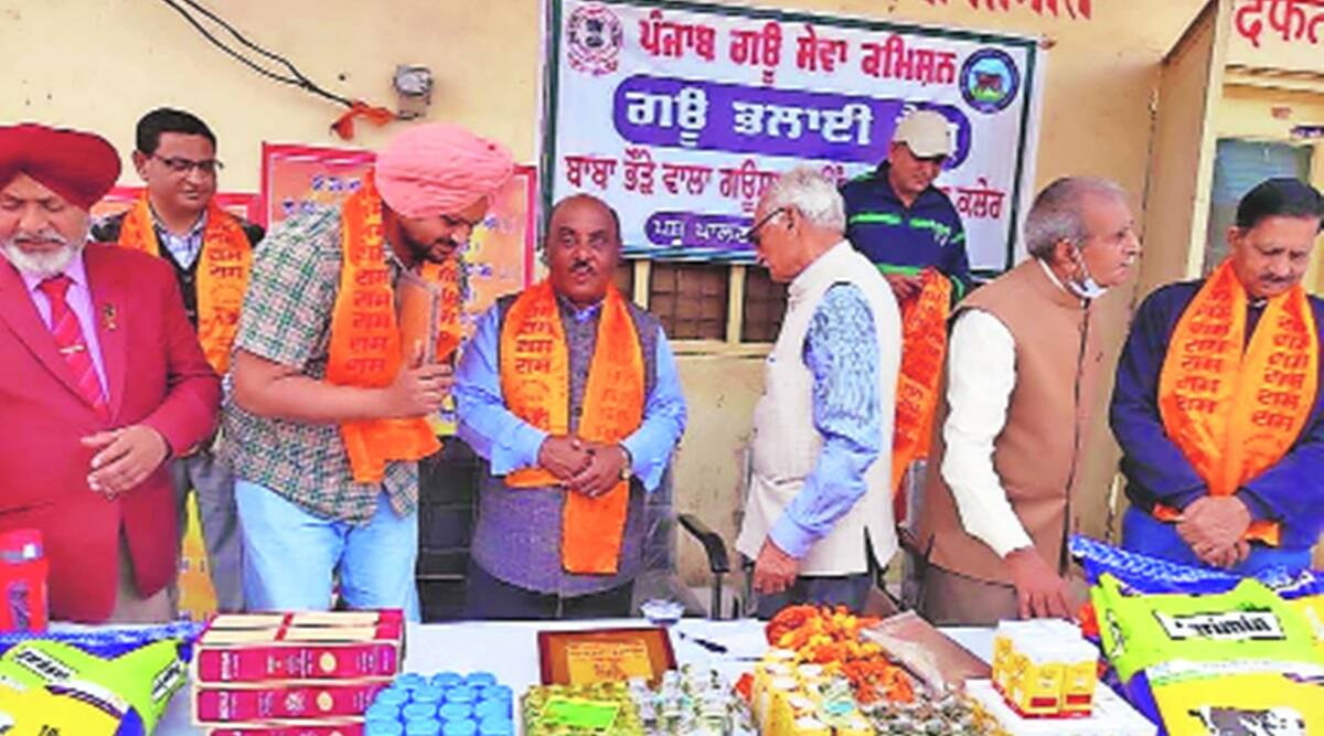 In poll year, Cong govt in Punjab launches 'Gau Bhalaai' camps