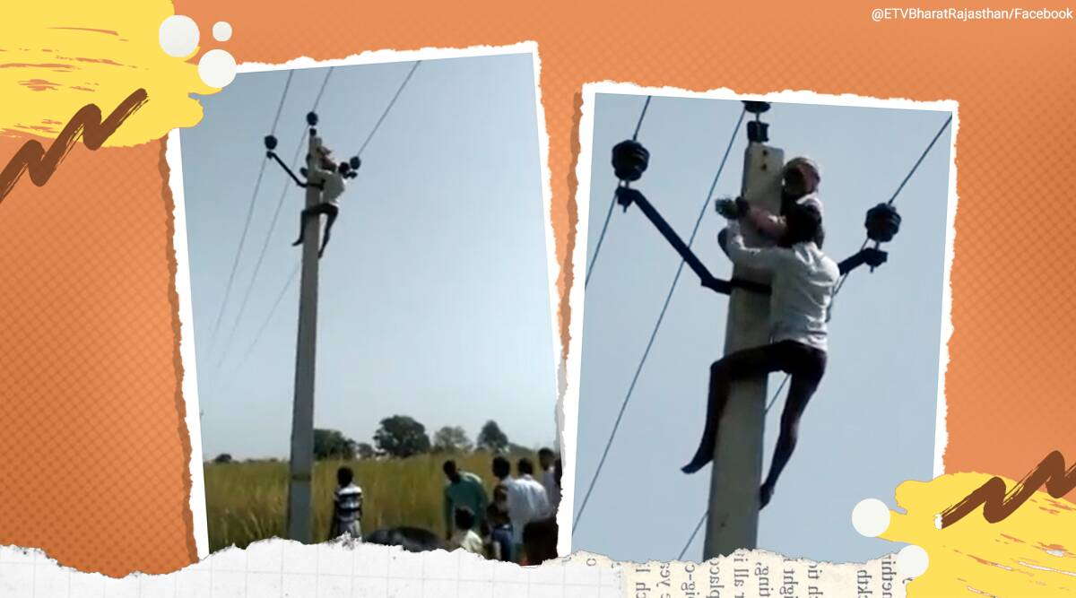 man climbs electric pole, man climbs electric pole second marriage demand, 60 yr old electric pole for second marriage, dholpur man climbs high tension line, viral news, odd news, Indian express news