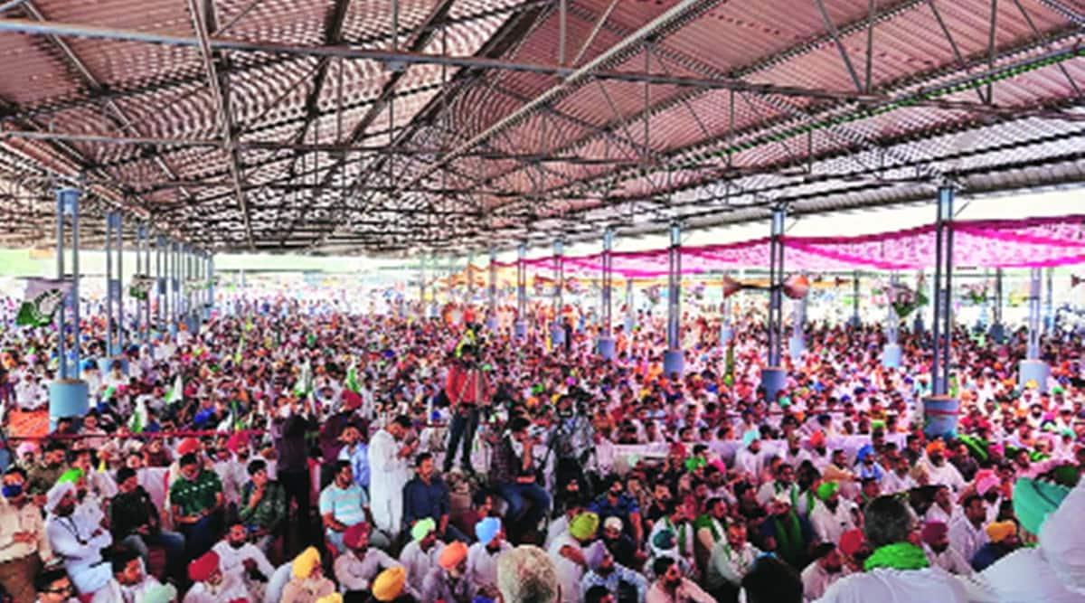 farmers rallies farmers protests Punjab covid