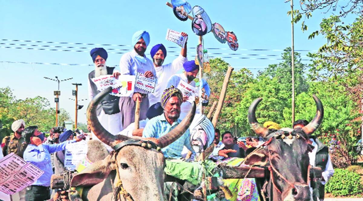 Punjab: SAD, AAP walk out separately over high tax on fuel, quota to SC in promotions