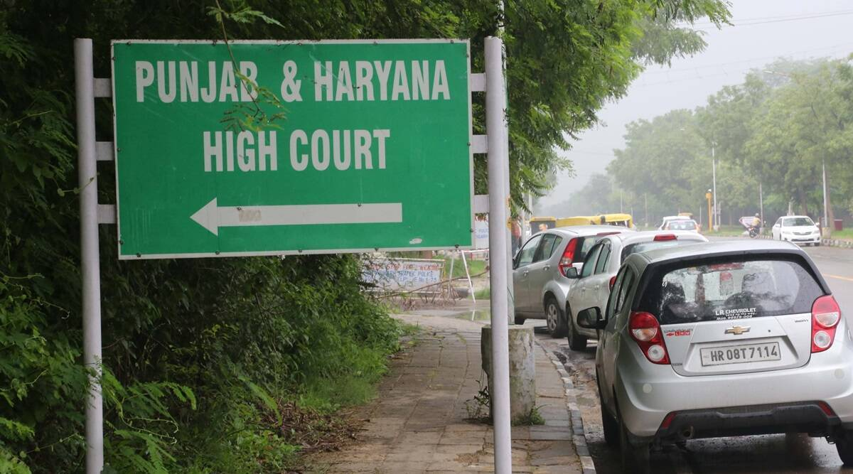 Live in relationship, Punjab and haryana High court, HC on live in relationships, Chandigarh news, Indian express