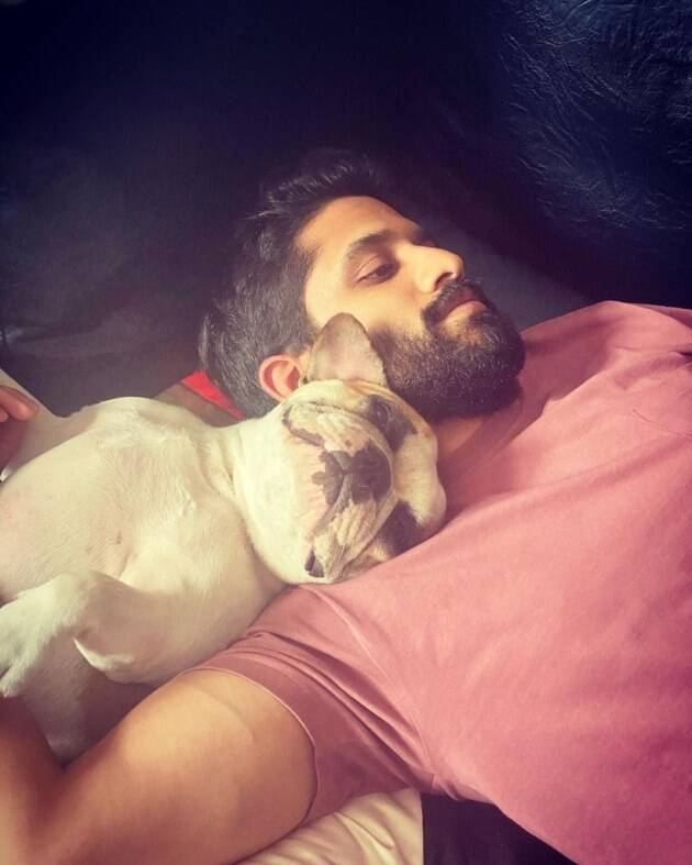 Samantha Akkineni, pet husband Naga Chaitanya,