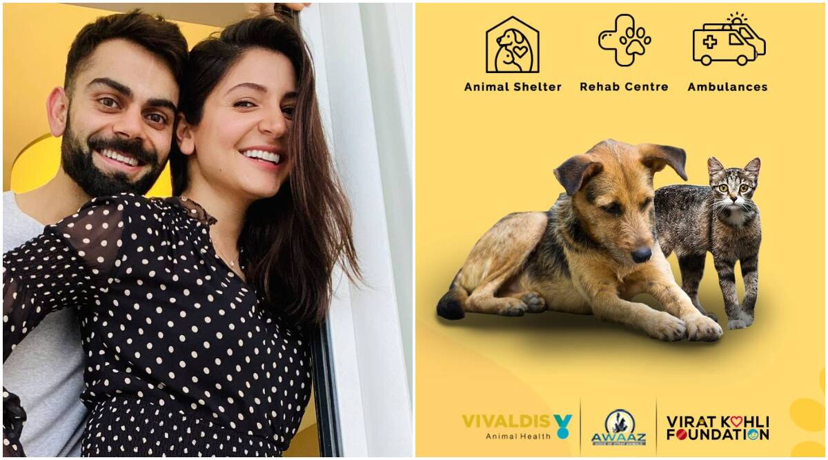 Virat Kohli opens two animal shelters in Mumbai: 'Anushka's vision to help  stray animals across India is truly inspiring' | Entertainment News,The  Indian Express