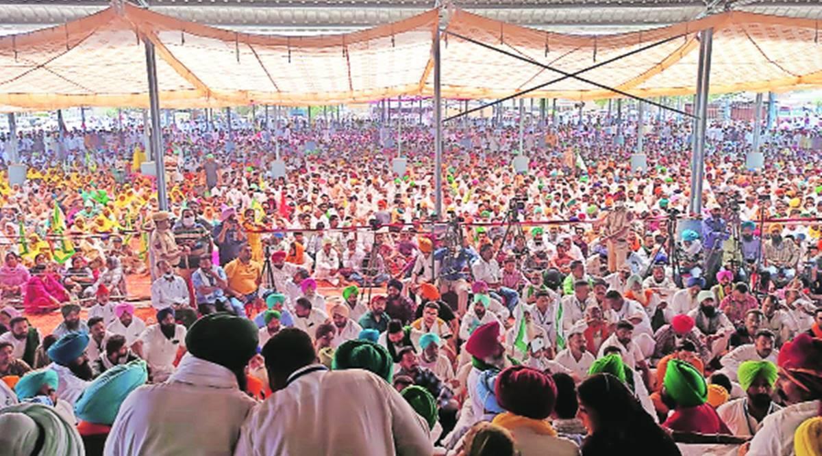 Abohar Ekta Rally: 'This fight is not only about farm laws... this is also against a political party'