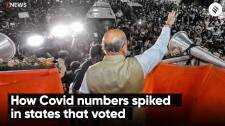 How Covid numbers spiked in states that voted | Covid19 Cases in Election States