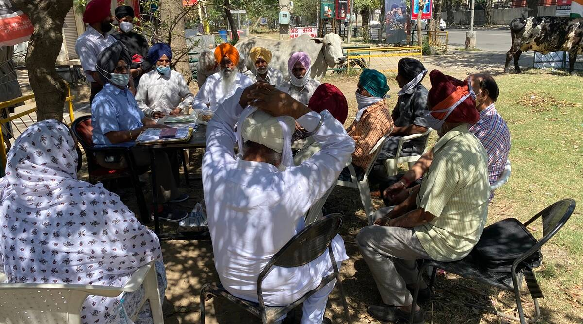 Booted out of Sainik Sadan, group of veterans share space with stray cows by liquour vend to help others
