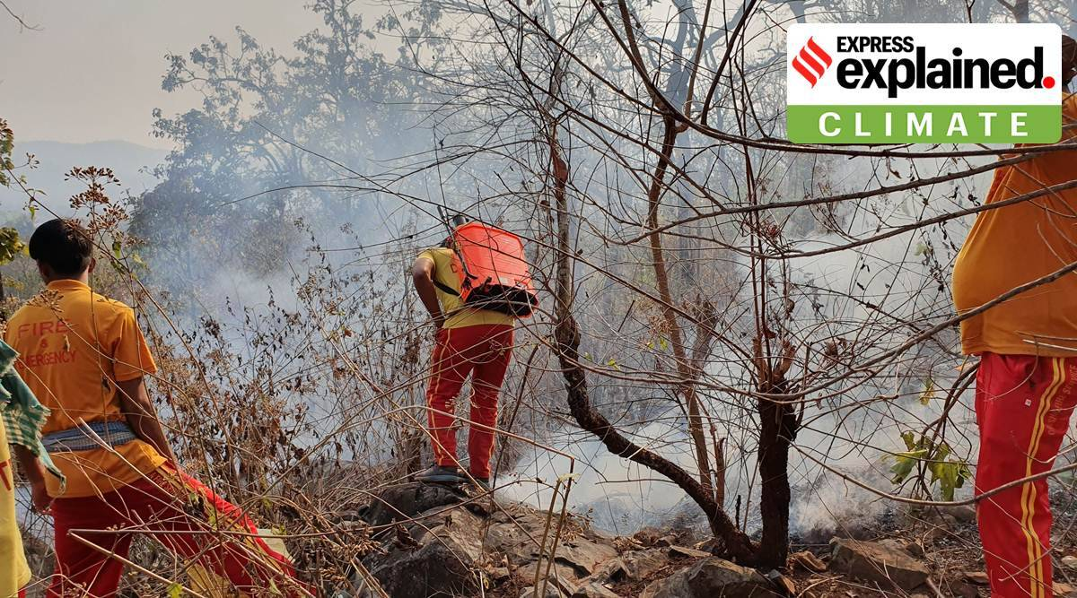 forest fires, India forest fires, Uttarakhand forest fires, Himachal forest fires, what is forest fire, forest fires climate change, forest fires explained, indian express