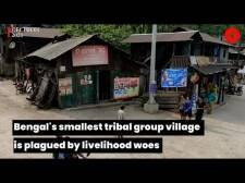 Bengal's smallest tribal group village is plagued by livelihood woes