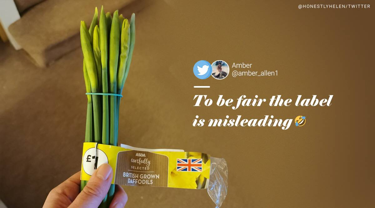 husband daffodils spring onions viral story, Helen Newman, England, England story, twitter reactions, trending, indian express, indian express news